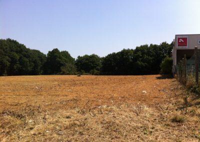 Terrain débroussaillé à Orvault